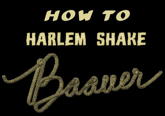 Do the Harlem Shake!